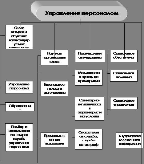 Структура службы управления