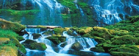 Исследование рынка туристических услуг на примере региона  Исследование рынка туристических услуг на примере региона Кавказских Минеральных Вод