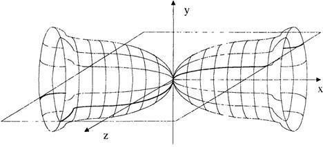 Рис 9 1 Пример результата решения уравнения на ЭВМ в форме пространственного тела