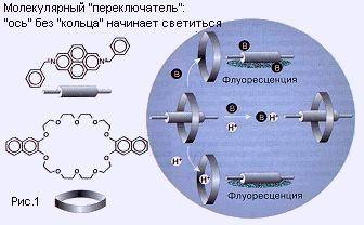 molek2.jpg (16972 bytes)